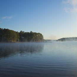 Click here for information on hunting, fishing, and boating licenses