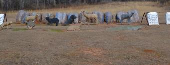 Ocmulgee Archery 3D Animals