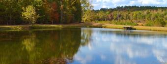 Ocmulgee Pond