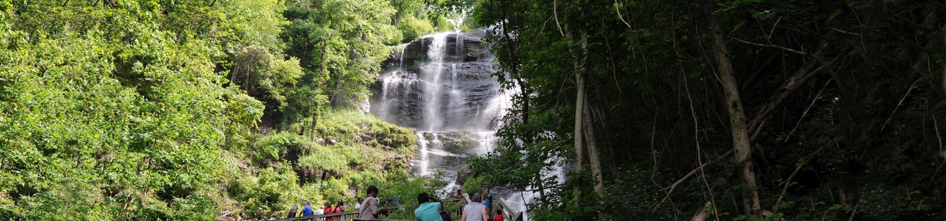 Amicalola Falls picture